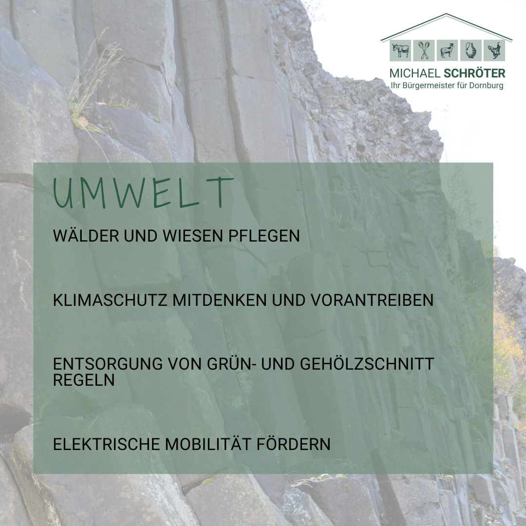 Read more about the article Umwelt